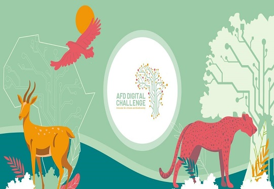 5th edition of the AFD Digital Challenge is out with a focus on innovating for the climate and biodiversity