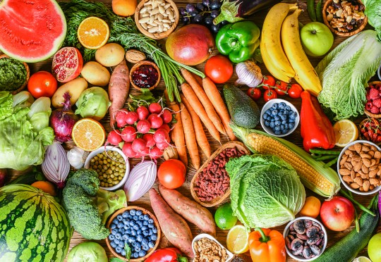 UN launches hunt for startups and enterprises changing the face of food systems